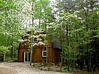 The Tree House - lake