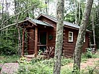 Wild Wood Cabin