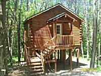 Tree Tops Cabin