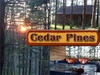 Cedar Pines