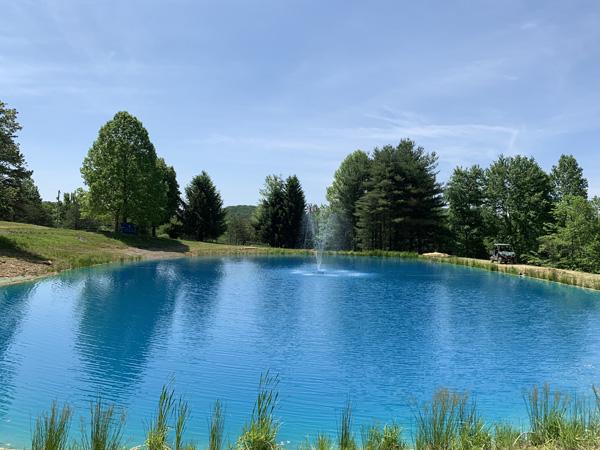 Hawking Pond Cabin